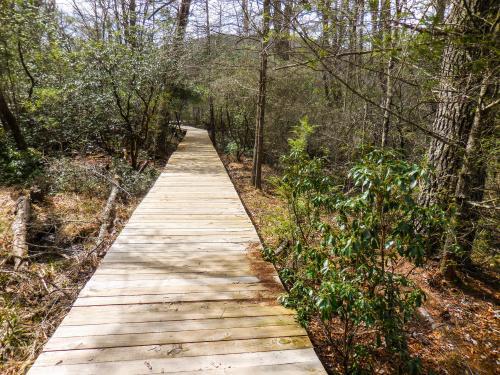 Pink Beds Loop Trail boardwalk