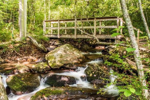Wildcat Rock Trail Bridge