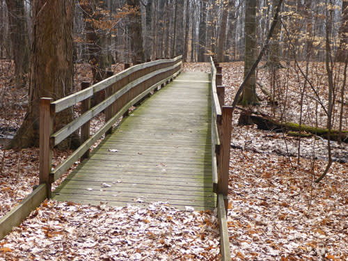 Bridge on a trail at Calvin College Ecosystem Preserve in Grand Rapids.
