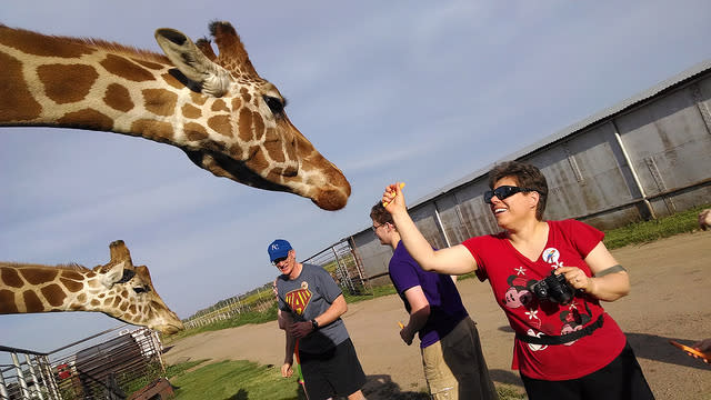 Woman in a red shirt feeding a giraffe.