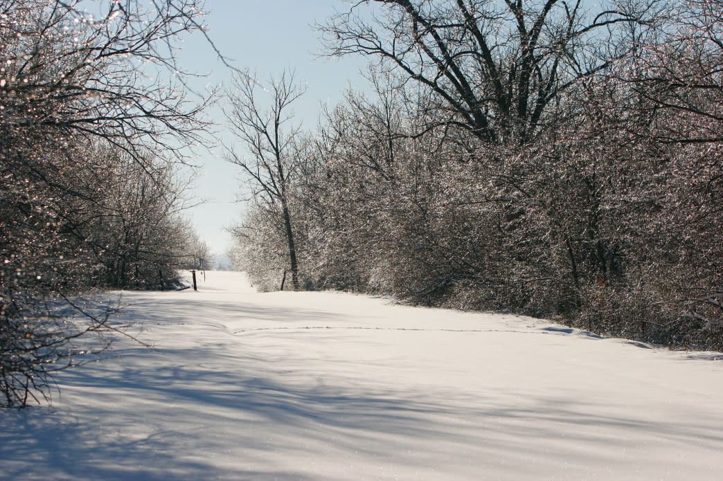 Clinton State Park has several trails exclusively for cross-country skiing.