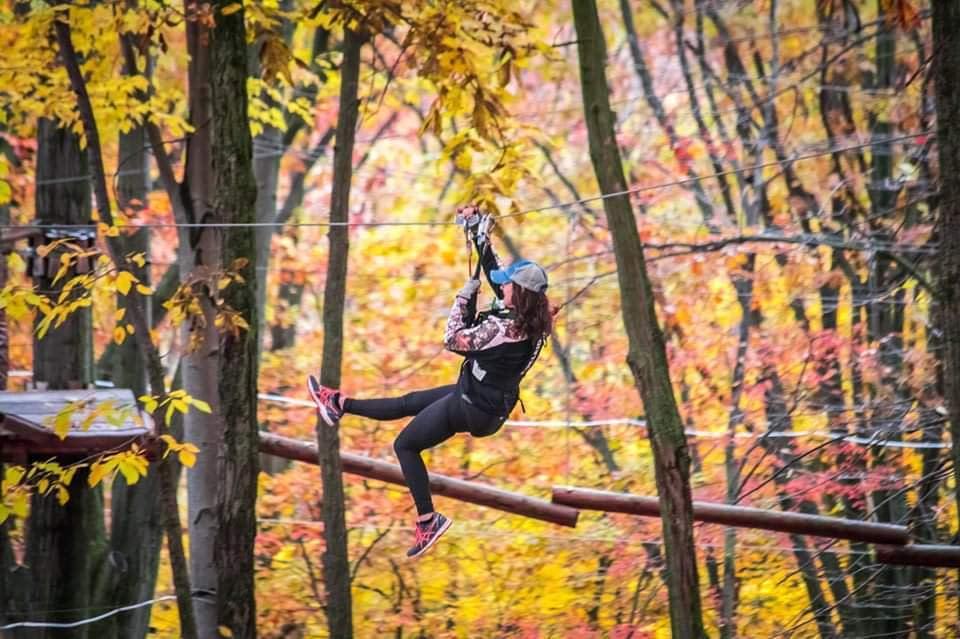 Color in the Forest Fall Festival | Children's Activities in Grand Rapids, MI