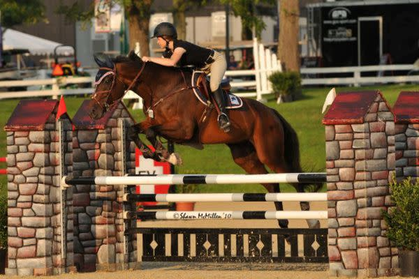 Great Southwest Equestrian Center Things To Do In Katy