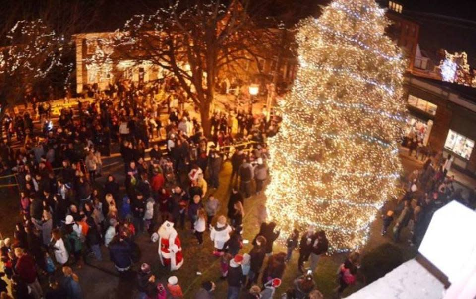 Tree Lighting and Grand Illumination