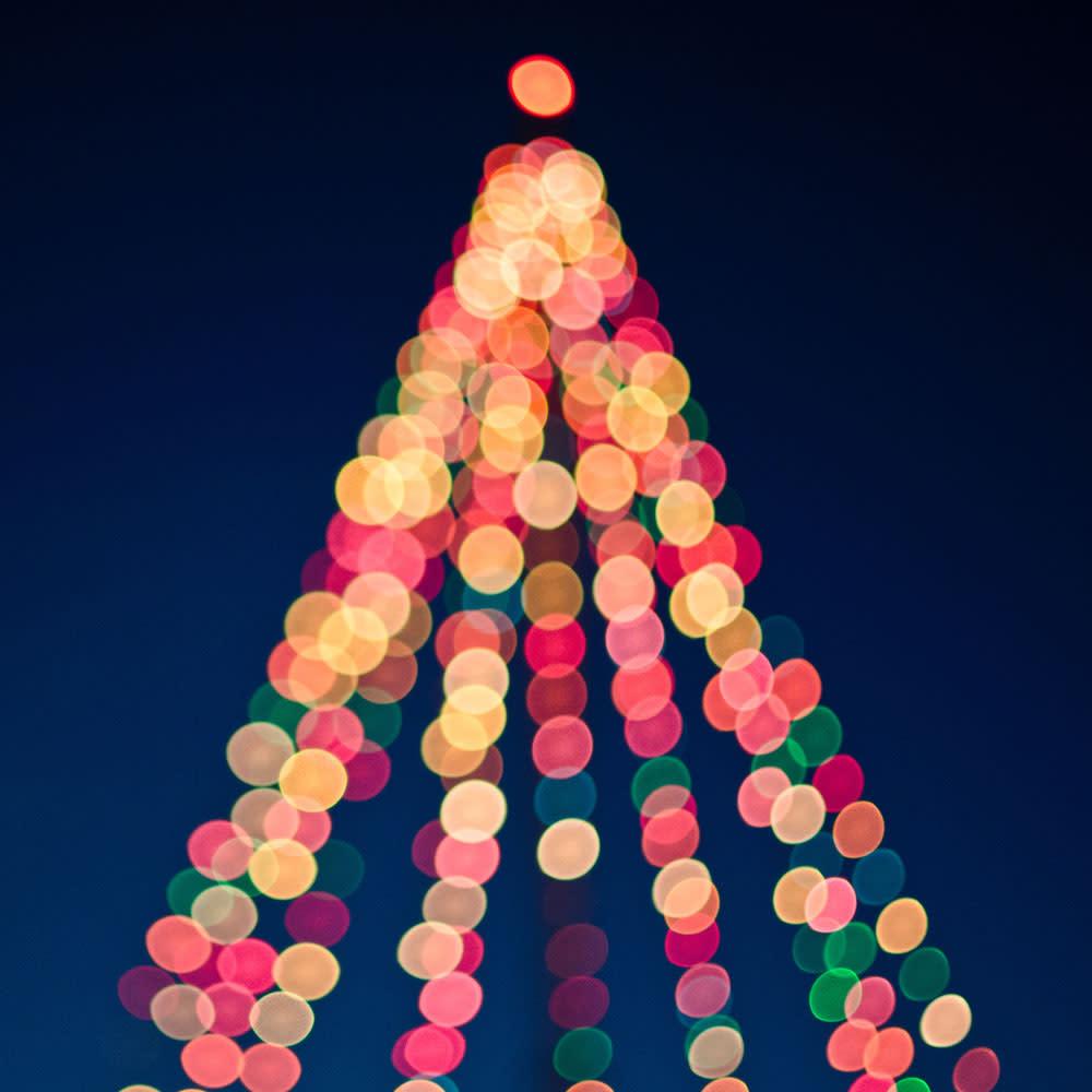 Image result for tree lighting