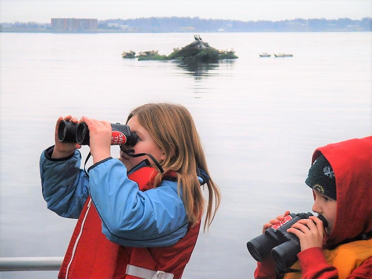 Newport Seal Watch & Lighthouse Tours with Save The Bay