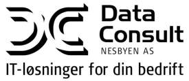 Data-Consult Nesbyen AS