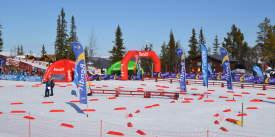 Liatoppen-Skiskyting-Ål