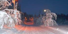 Liatoppen-Vinter-Ål