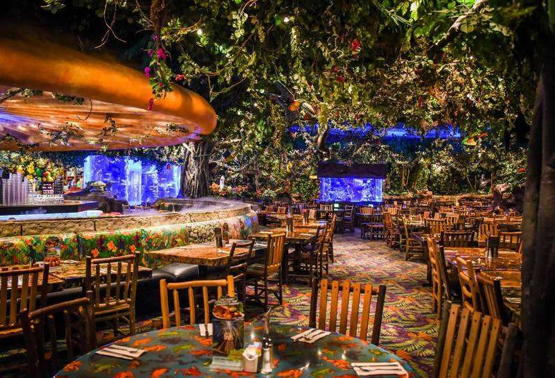 Rainforest Café Galleria Restaurants In Houston Tx 77056