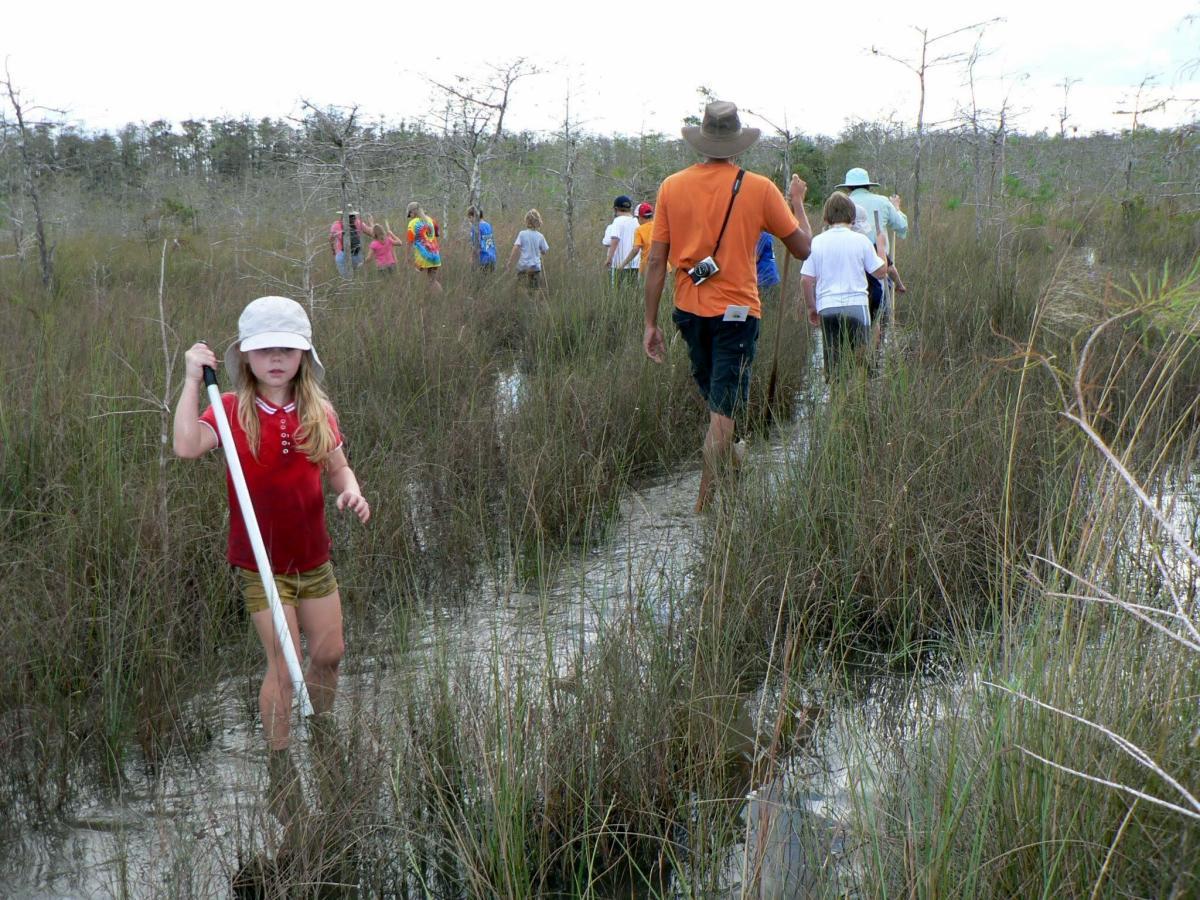 Everglades adventure full video