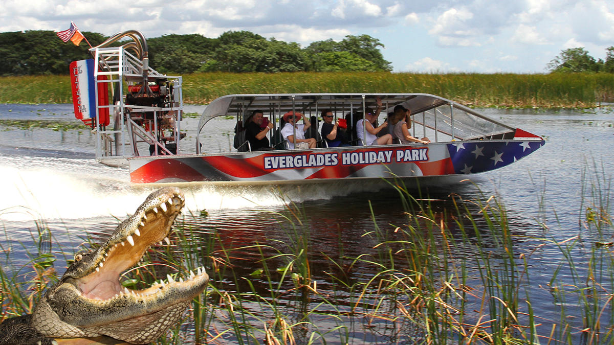 Port Everglades Park And Cruise Hotels