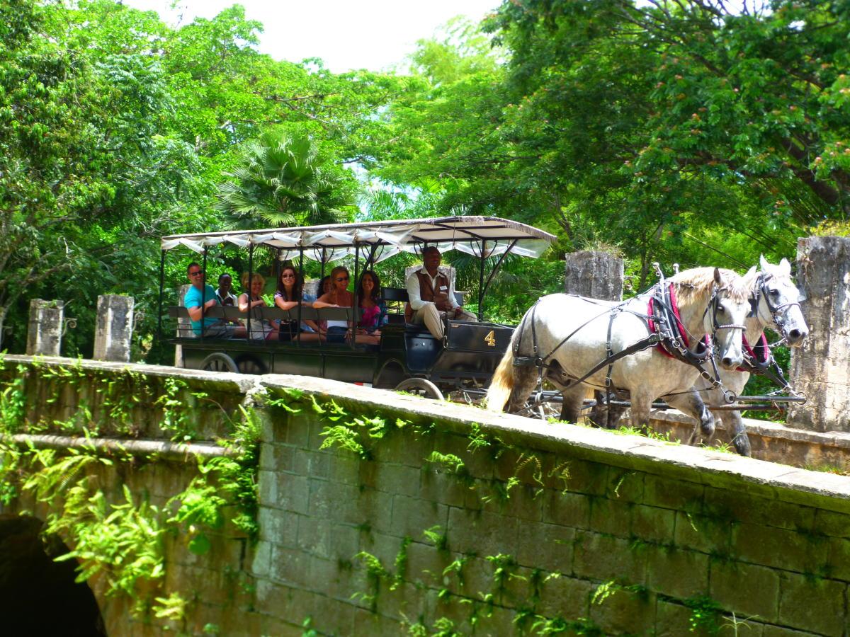 Chukka Caribbean Adventures Falmouth