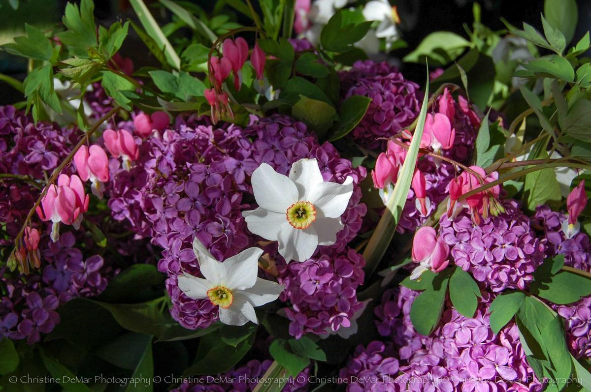 Balet Flowers And Design Llc