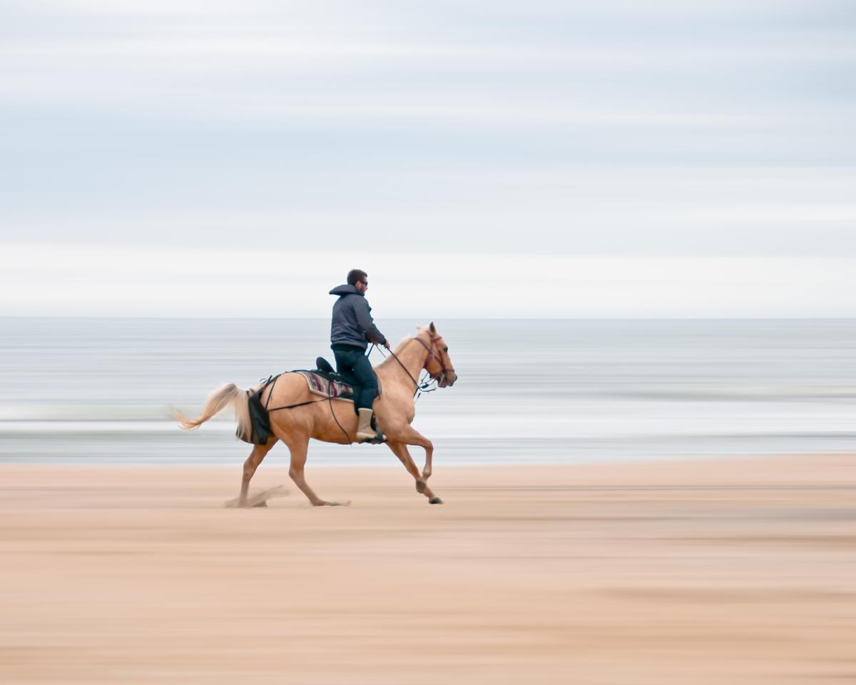 3 Next Virginia Beach Horseback