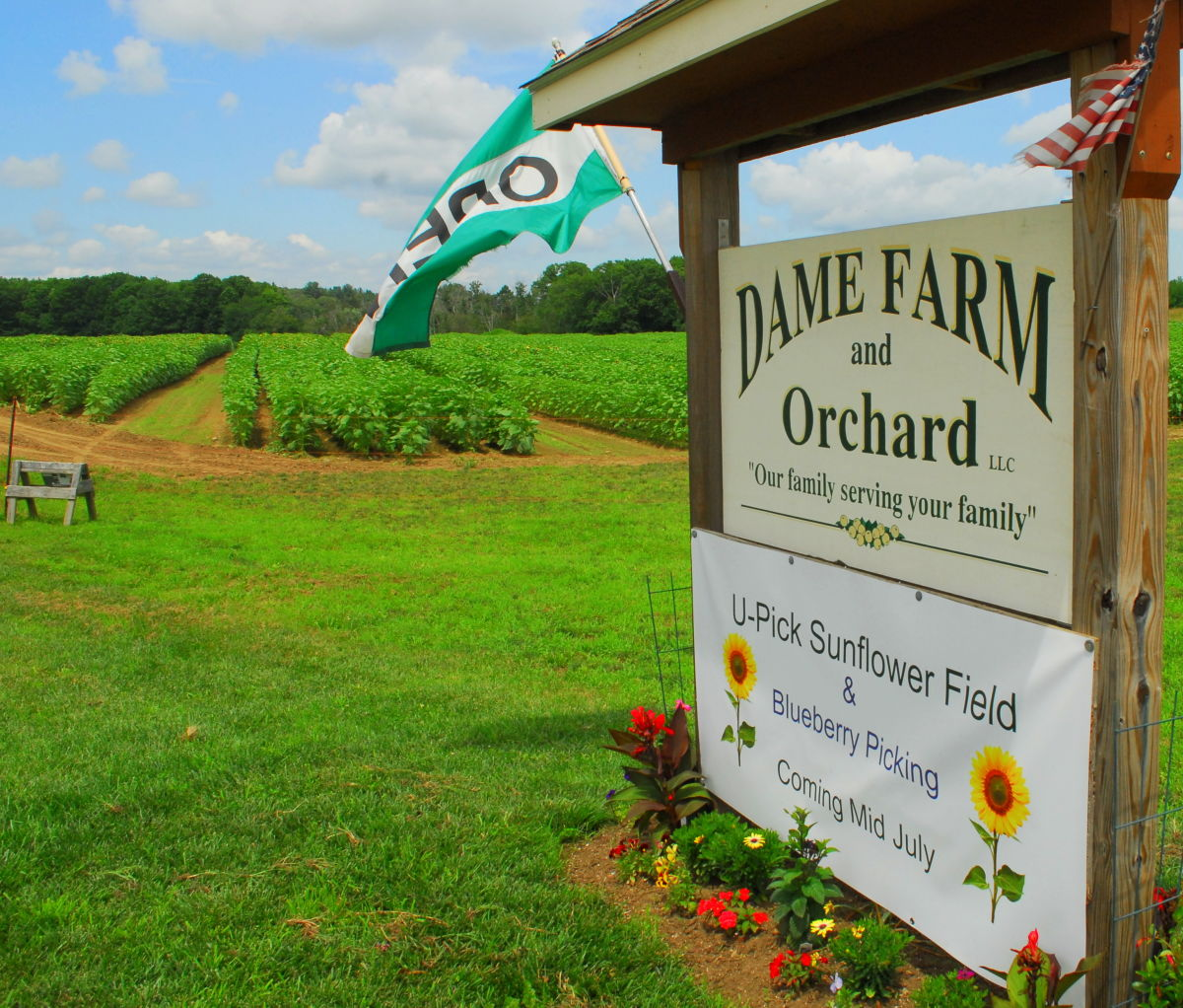 - Dame Farm And Orchard