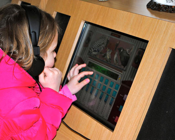 McCloud Nature Park - Indoor Interactive Learning Center