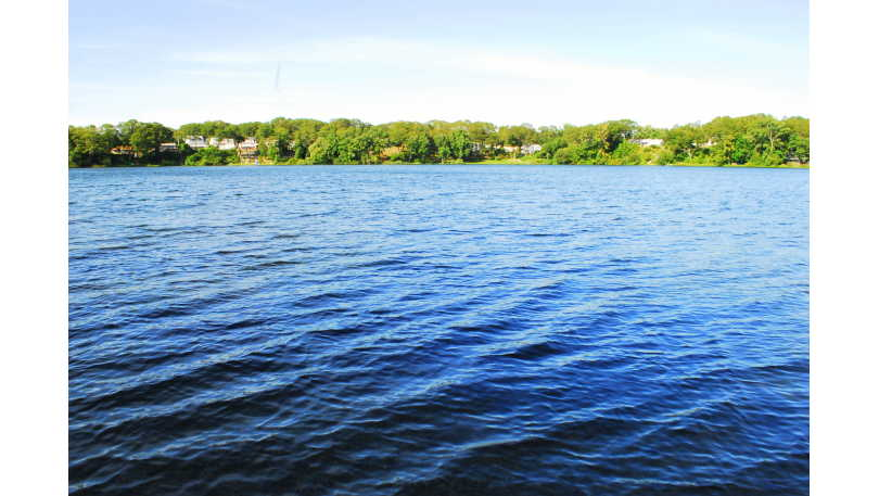 Gorton Pond