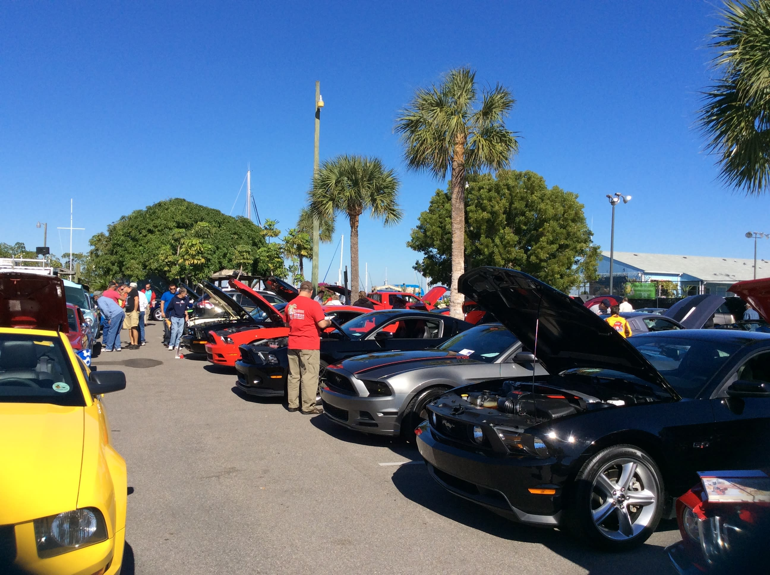 Mustang Club Of Charlotte County Car Show - Punta gorda car show 2018
