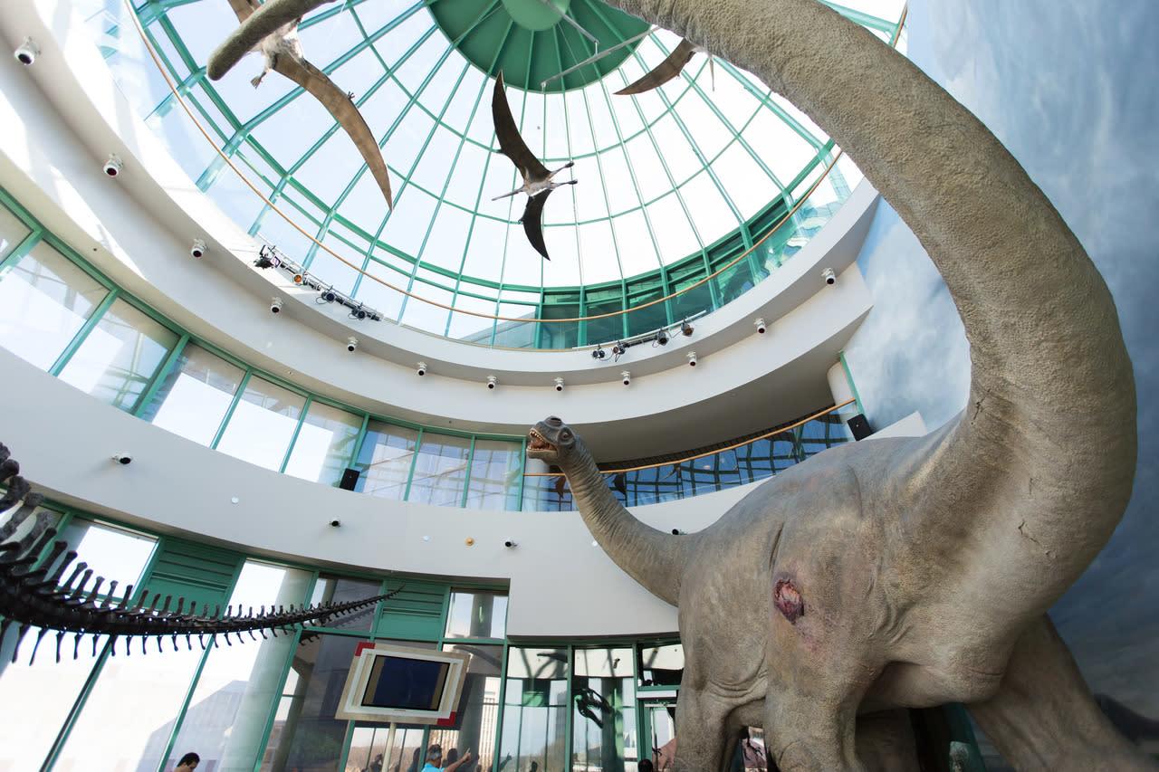North Carolina Museum Of Natural Sciences Raleigh Nc 27601