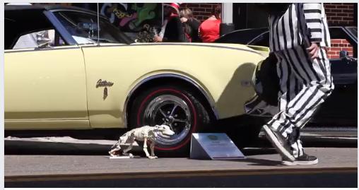 Th Annual FantasmaFest Hell On Wheels Classic Car Show - Classic car show tampa fl