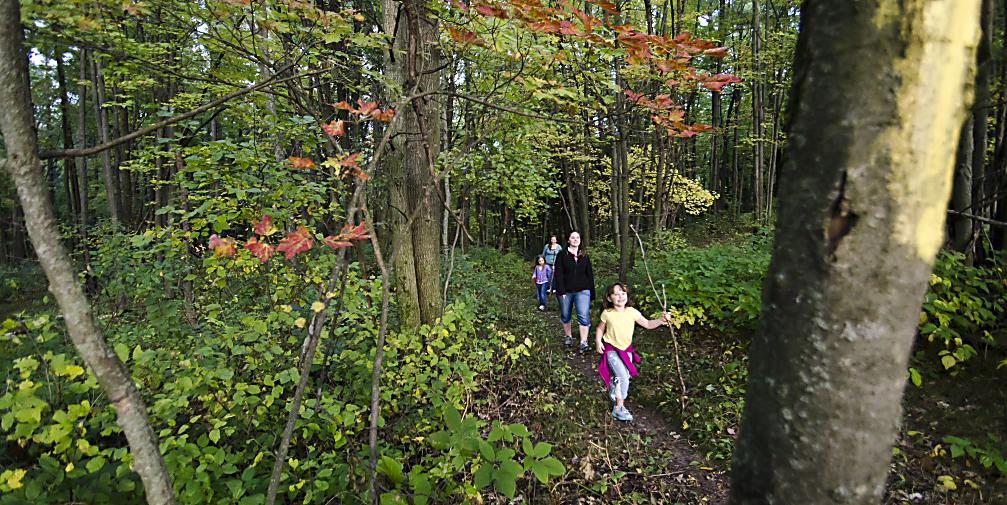 Hiking the Ice Age Trail in the Stevens Point Area
