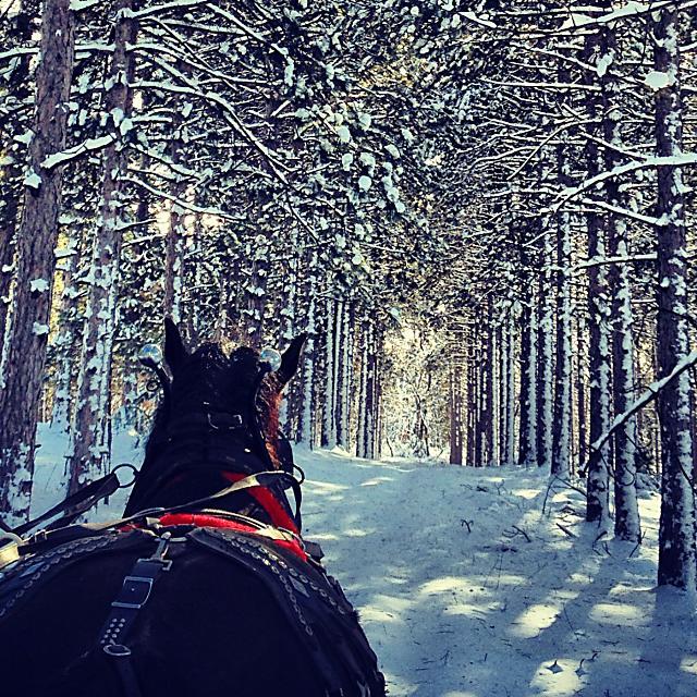 2012 sleigh ride Wild West Campground
