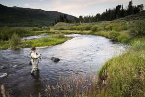 Man Fly Fishing on the Weber River