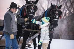 Horse Drawn Sleigh at Stillman Ranch