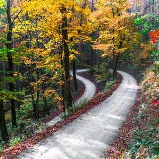 Yellow Gap Road Late Fall 2016
