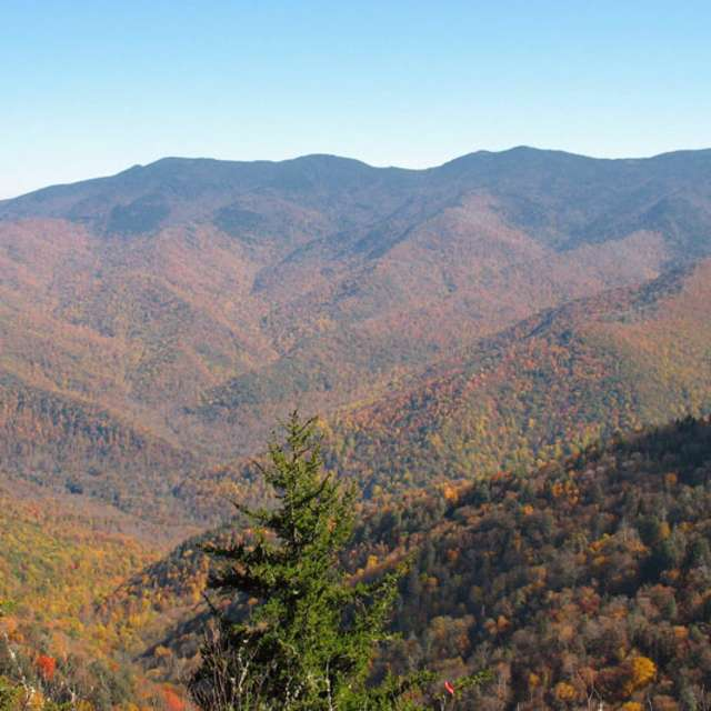 Difficult Hiking Trails In Asheville Great Outdoors