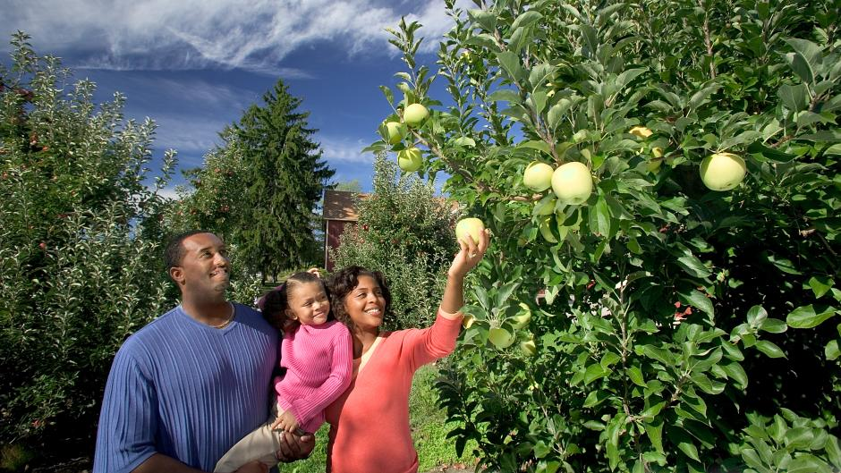 Getting outside to pick apples at Robinette's Apple Haus & Winery is a West Michigan Tradition.