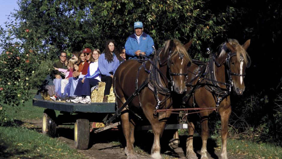 Enjoy a family-fun hayride at one of the many cideries in West Michigan, including Robinette's pictured here.