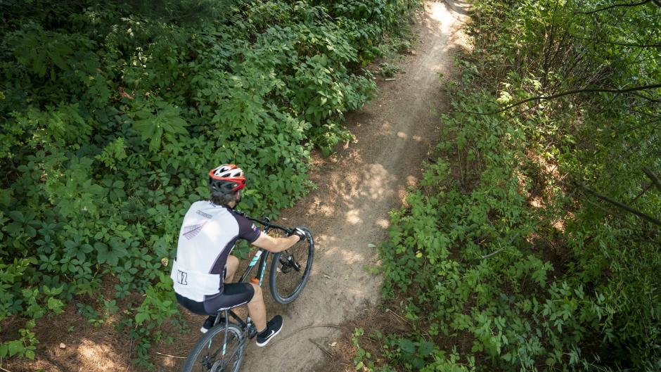 Mountain biker riding through trail in West Michigan