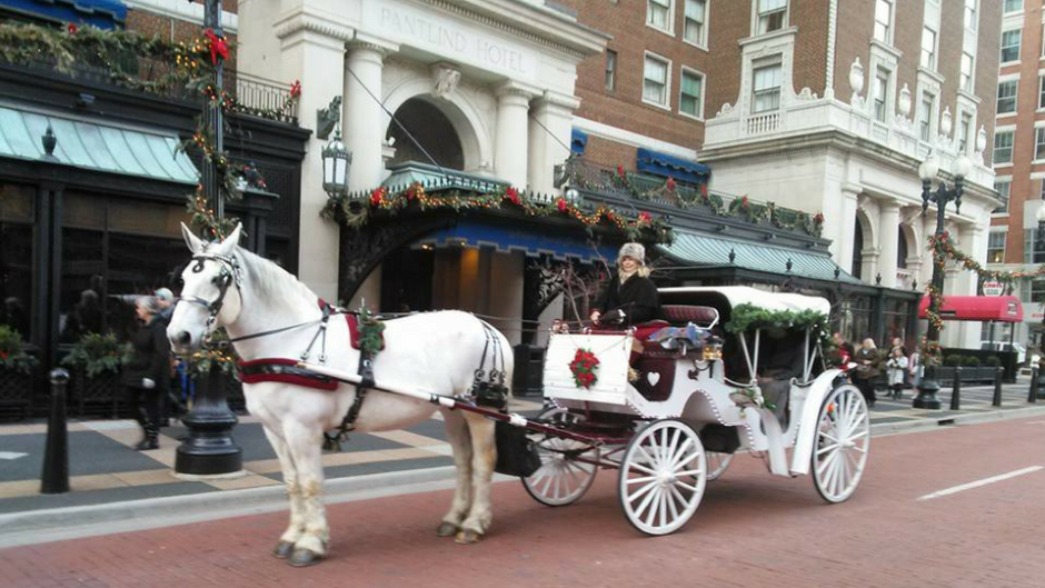 To hop on a Common Gentry Carriage ride, head to the corner of Monroe and Lyon on Friday and Saturday nights. Carriage rides are available throughout the year.