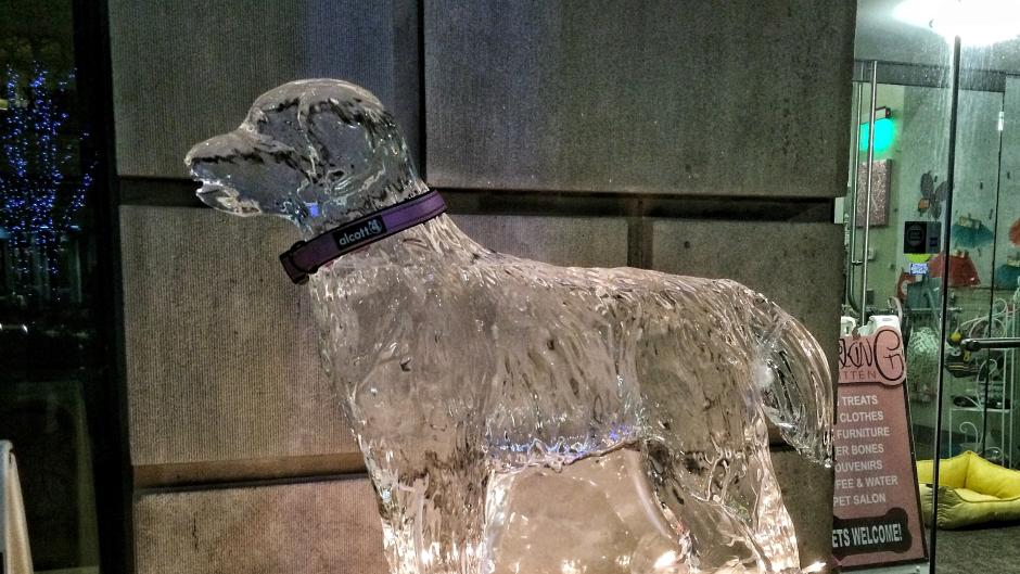 Ice sculpture of a dog at Valent-ICE
