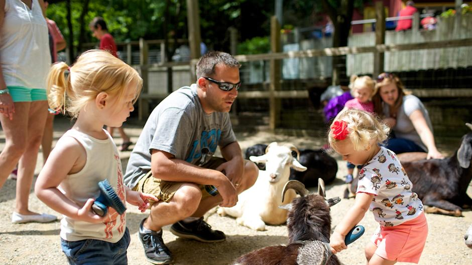 Live animal demonstrations are one of the many activities children can experience during a zoo overnight.