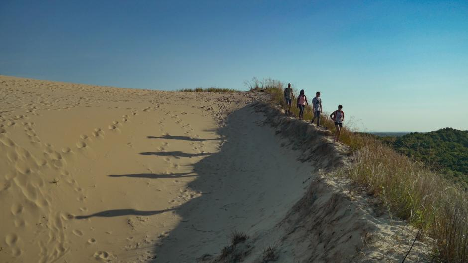 Hiking along Sand Dune at PJ Hoffmaster Park provides scenic views and a workout!