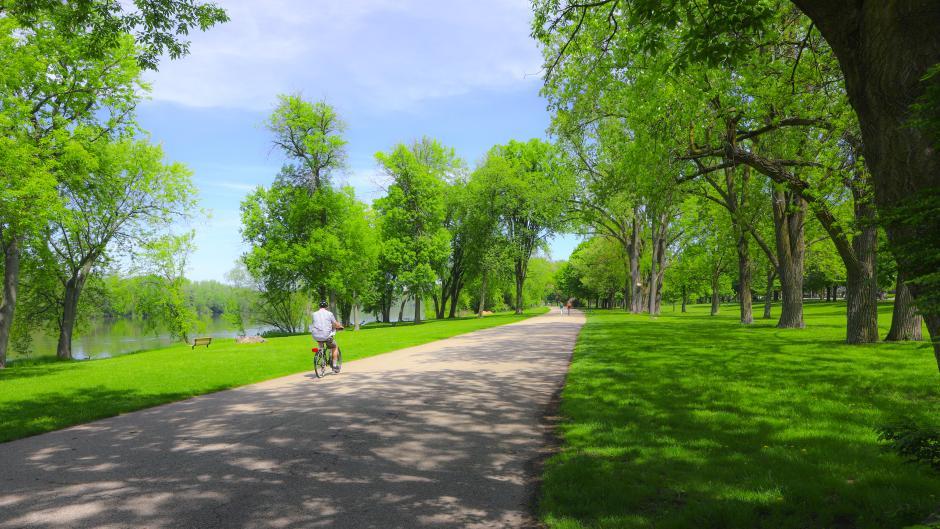 One Person Biking on Bike Path Through a Park