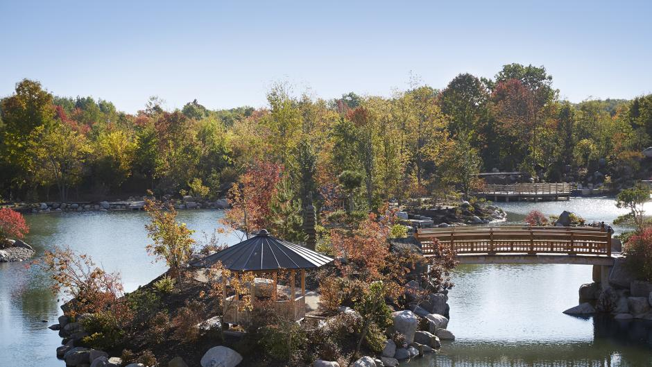 Getting to explore the Japanese Garden at Frederik Meijer Gardens & Sculpture Park in Grand Rapids is just one of the benefits of hosting your meeting there.
