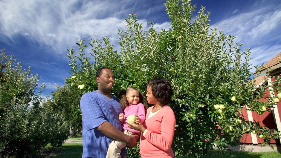 Make sure to plan a family outing to a local apple orchard and/or cidery this fall season.
