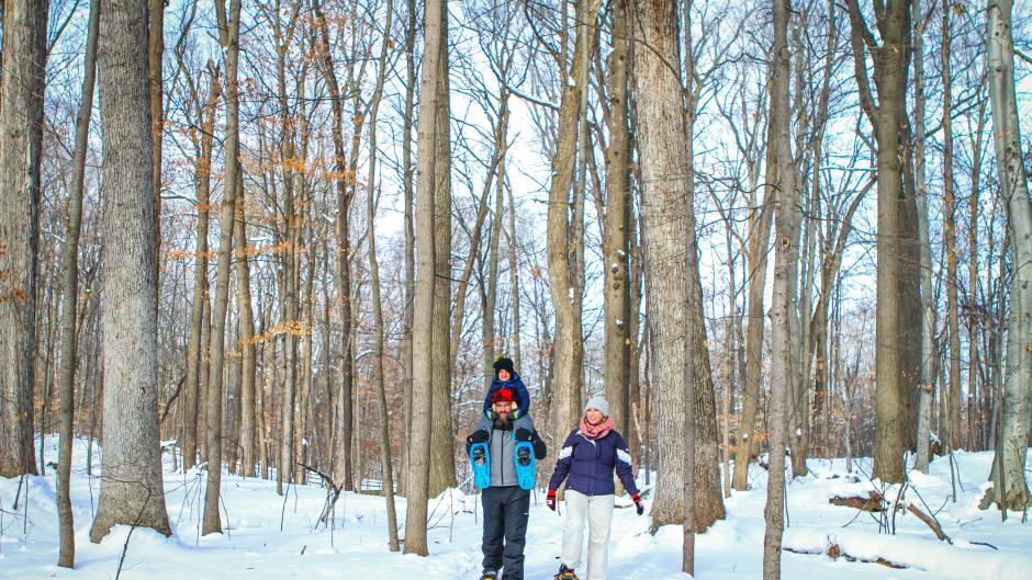 Family snowshoeing through the woods