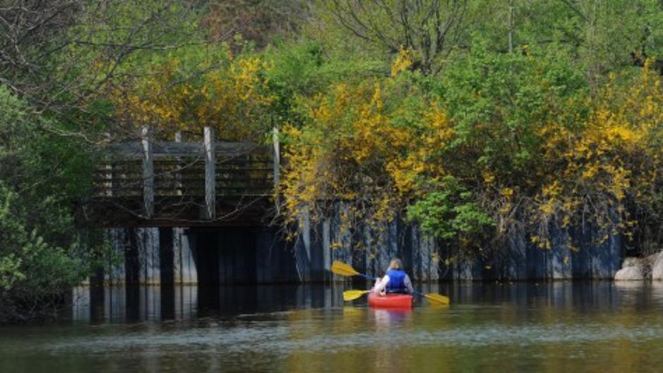 Kayaking in Ann Arbor