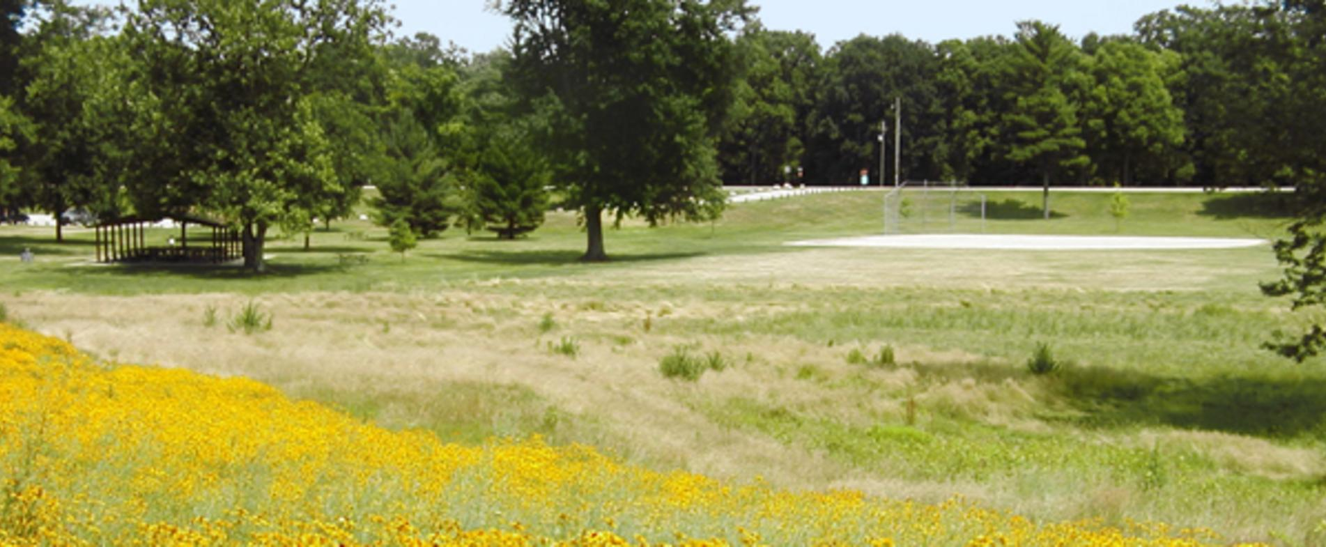 Right next to Millennium Park lies Johnson Park, which connects bikers to nearby towns such as Grandville.