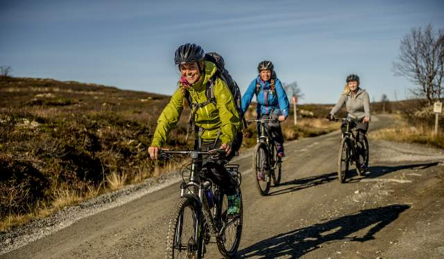 Three people cycling at a dirt road on the Hardangervidda mountain plateau in Norway