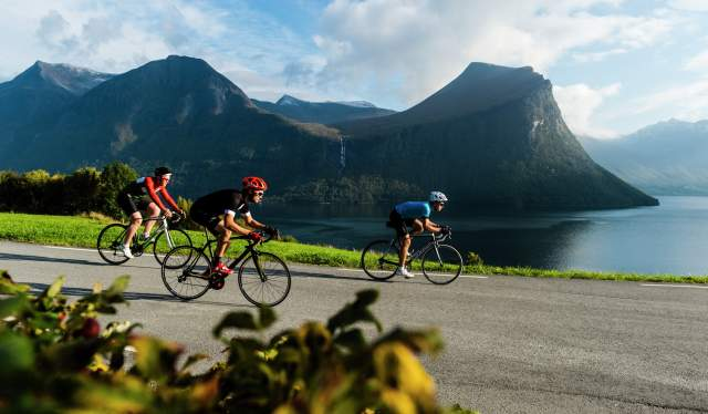 Three people road cycling along Isfjorden in Fjord Norway
