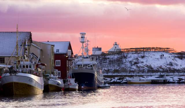 Henningsvær harbour at sunset in winter, Lofoten, Northern Norway