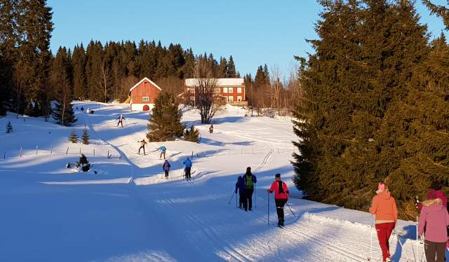 People skiing in Bymarka outside Trondheim in the Trøndelag region of Norway