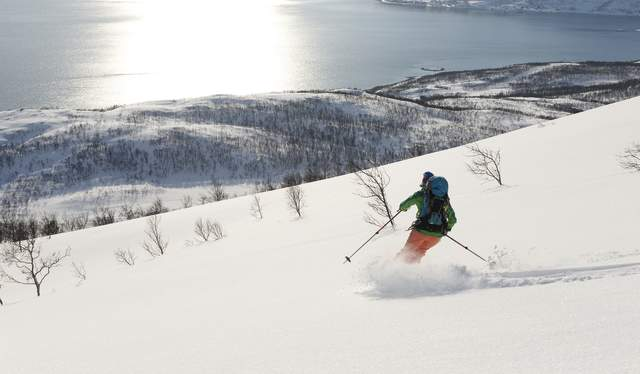 A person does off-piste skiing with a view of the sea at Gammelgårdsfjellet, Tromsø, Northern Norway