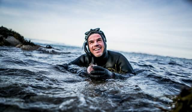 En person dykker etter kråkeboller i Steigen i Nordland, Nord-Norge